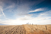 Great Plains in Alberta Canada