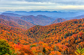 Autumn colors in Great Smoky Mountains National Park, North Carolina