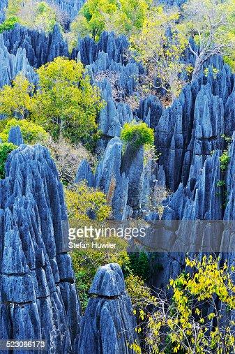 Great Tsingy Unesco World Heritage Site Karst Landscape ...