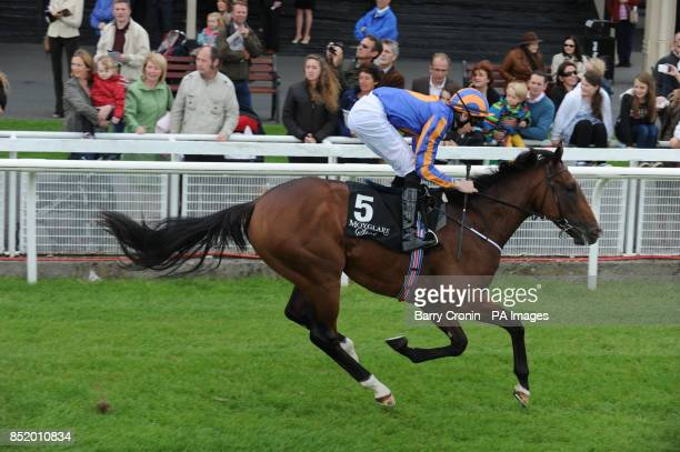 Great White Eagle ridden by Joseph O'Brien wins The Go And Go Round Tower Stakes during the Moyglare Stud Stakes Day at the Curragh Racecourse Co...