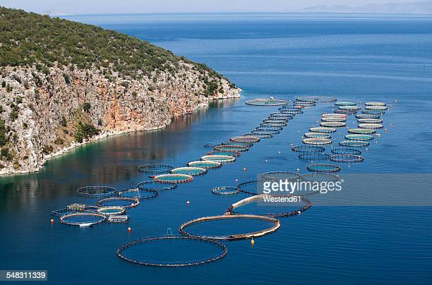 Greece, Sofiko, aquaculture in Mediterranean Sea