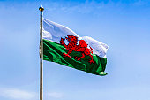 Green and white Welsh flag with the red dragon
