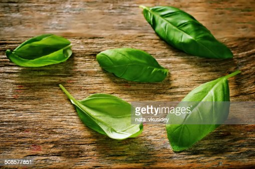 green Basil : Stockfoto