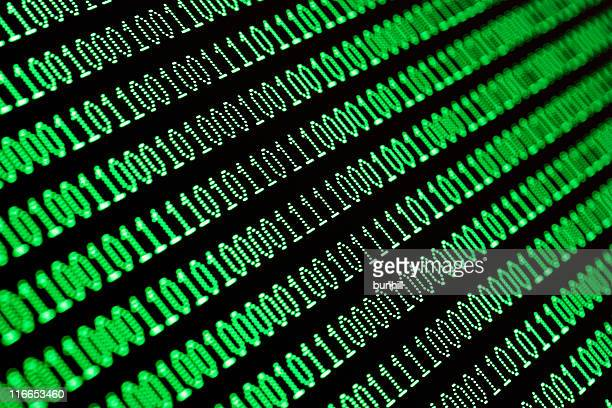 Green binary computer data code on screen of monitor
