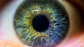 A green. blue and purple iris. A multi colored human eye.
