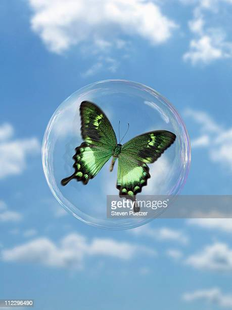 Green butterfly in bubble against blue sky
