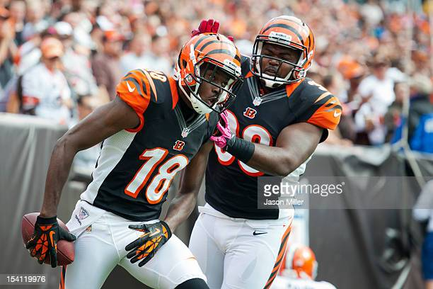 J Green celebrates with fullback Chris Pressley of the Cincinnati Bengals during the second quarter after Green scored a touchdown against the...