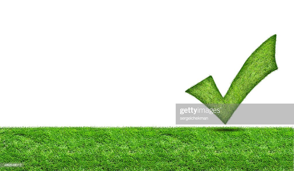 Green check mark on a green meadow : Stock Photo