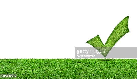 Marca de verificación verde en un prado verde : Foto de stock