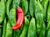 Fresh green and red chile from New Mexico