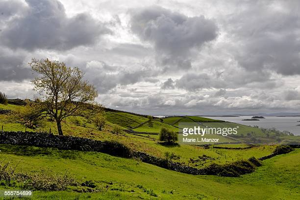 Green Connemara