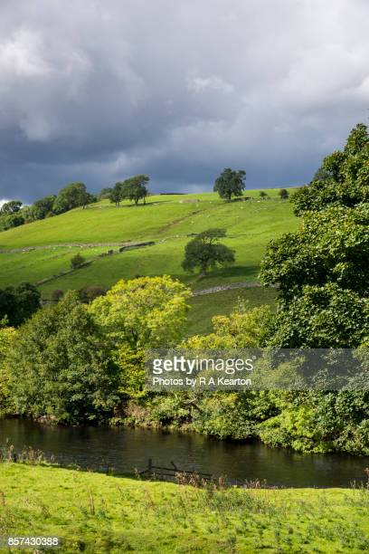 Green countryside beside the river Swale, Yorkshire Dales, England