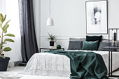 Green blanket on bed in elegant bedroom interior with poster on white wall and plant on table