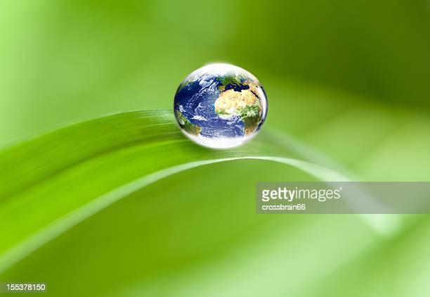 Grüne Umgebung: world globe auf Blatt