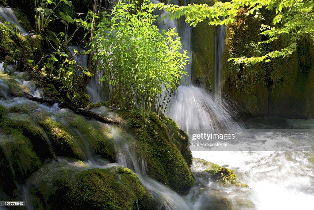 Green Falls : Stock Photo