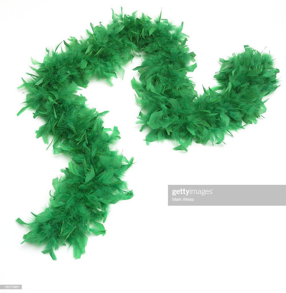 'Green feather boa, close-up'
