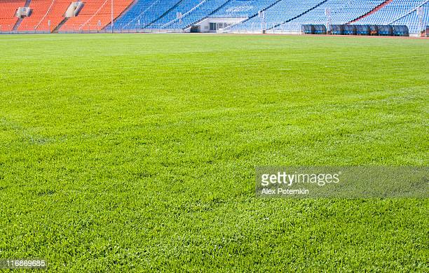 Green field for playing sports