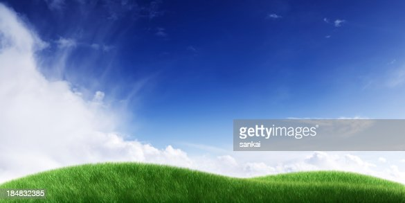 Green field. Panoramic.