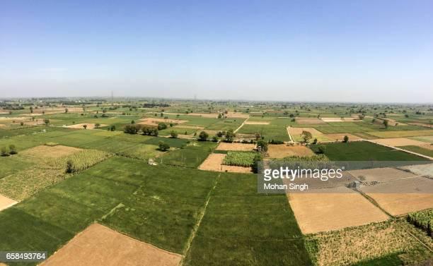 Green field view from Trilokteerth Dham Parishar