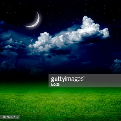 Noite, o campo verde : Foto de stock