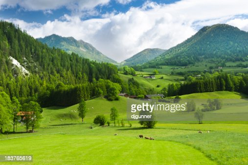 Green fields and mounatins