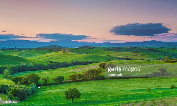 Green fields in Tuscany