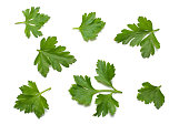 green fresh parsley leaf isolated on white background