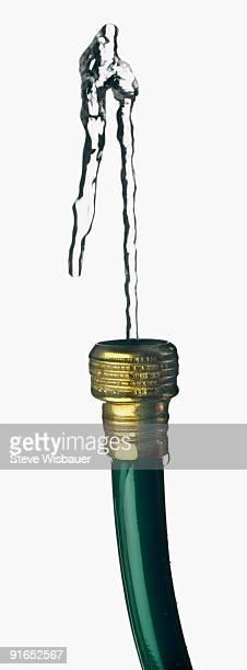 Green garden hose spouting water