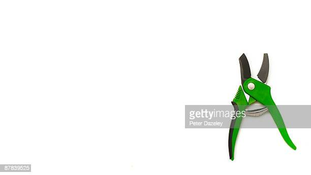 Green garden secateurs on white background.