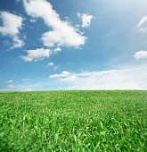 shot of bright blue sky with green grass field in a square with copy space for the designer