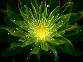 Green glowing fractal flower, computer generated abstract background