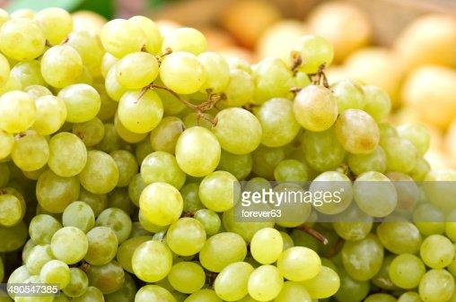 Verde uvas en la vid : Foto de stock