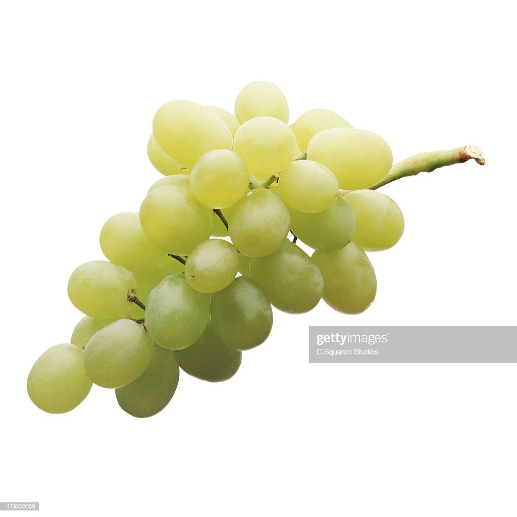 Green Grapes : Stock Photo