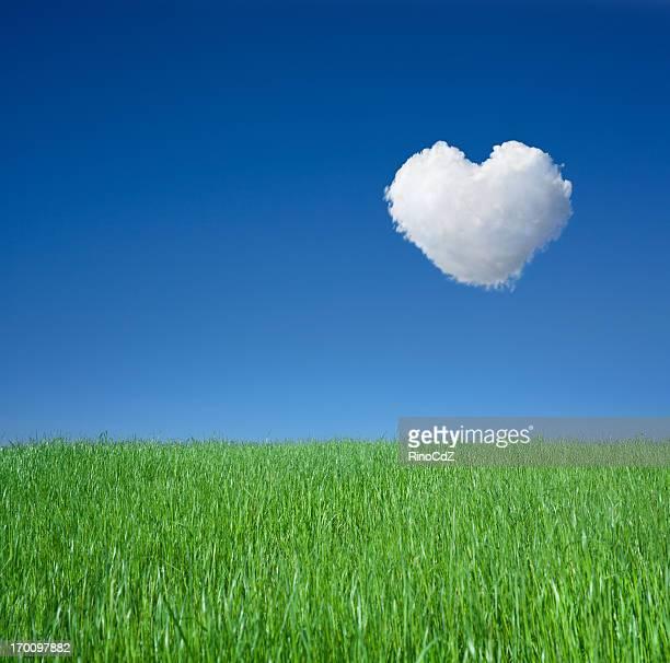 Grünem Gras und Cloud Herz