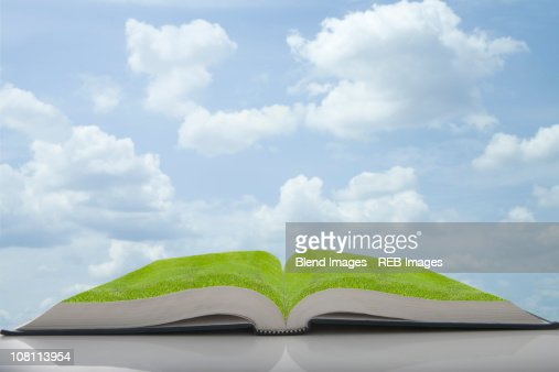 Green grass growing in pages of book : Stock Photo