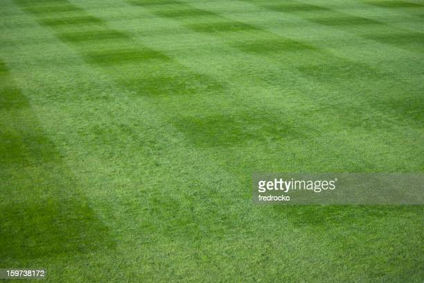 Green grass lawn at a live sporting event
