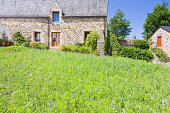 'green grass lawn on backyard of old breton estate, France'