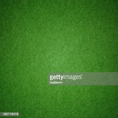 Green grass texture background (XXXL)