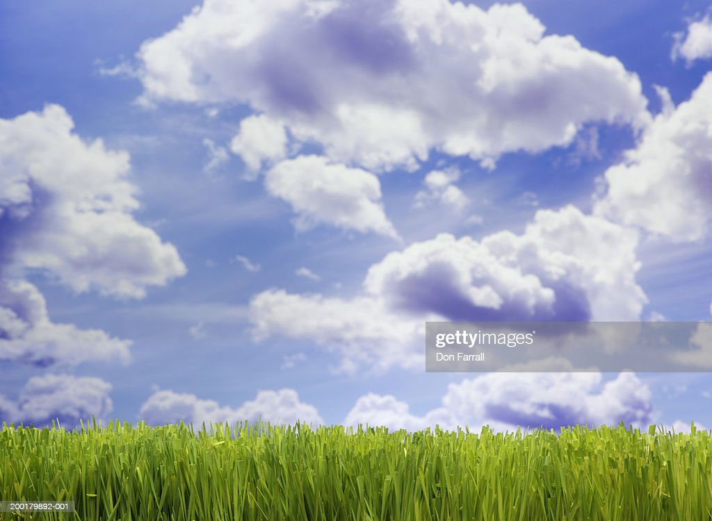 Green grass under cloudy sky (Digital Composite) : Stock Photo