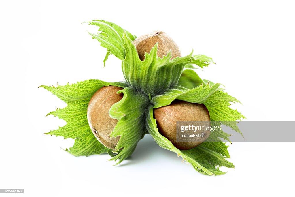 green hazel nuts