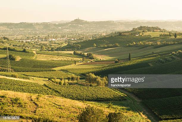Green Hill tuscany land panorama - vintage tone