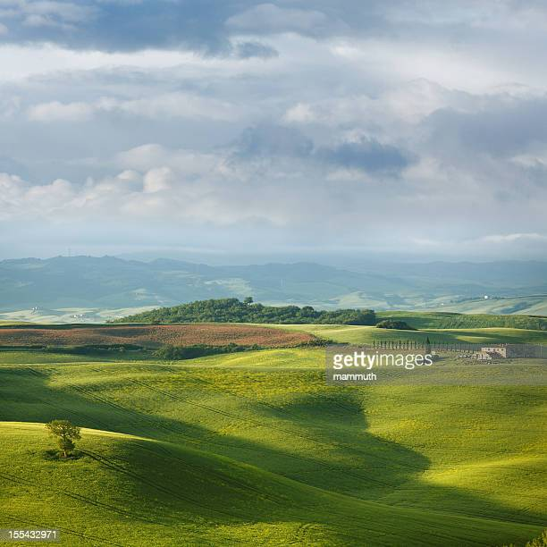 Green hills of Tuscany in the spring