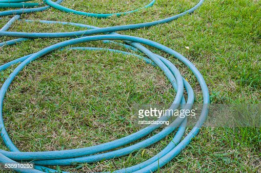 Green hose reel is placed on the lawn : Stock Photo