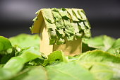 Green House concept of environment Friendly