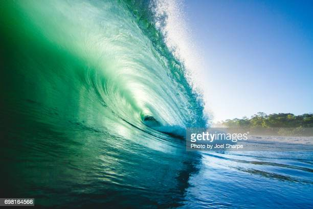 Green Jungle Wave