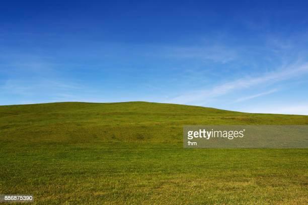 Green landscape and blue sky (Allgäu/ Bavaria/ Germany)