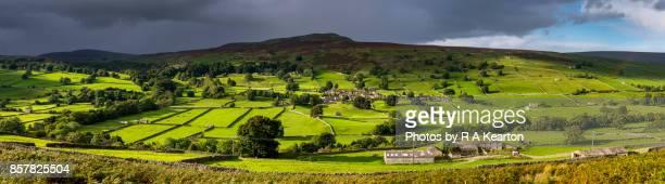 Green landscape in Swaledale, Yorkshire Dales, England
