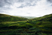 Green landscape with sheep and moody sky viewed from Pen y Fan mountain, Wales, Brecon Beacons National Park