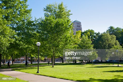 Green lawn and trees at UMichigan campus