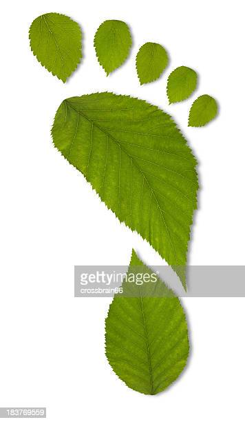 Green leaf carbon footprint concept